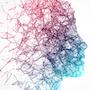 neuroplasticity-NN