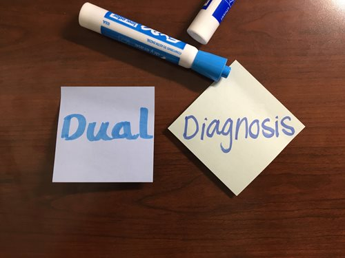 understanding dual diagnosis essay This website offers information and resources for people with an interest in dual diagnosis and other complex needs.
